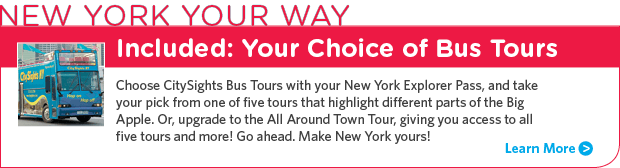 Explore the New York you came to see.