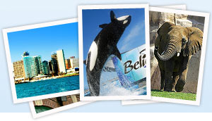 Find family-friendly things to do in San Diego with the Go San Diego Card or San Diego Go Select