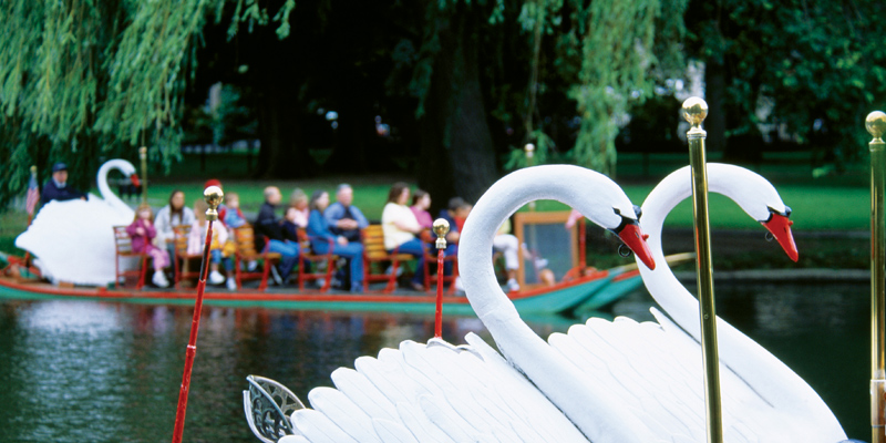 The Swan Boats of Boston 1
