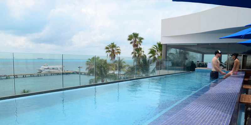 VIP Royal Swim with the Dolphins in Isla Mujeres Discounts