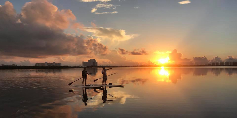 Sunrise Wildlife SUP Tour 1