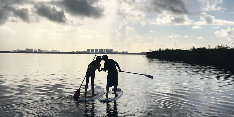Sunrise Wildlife Stand Up Paddleboard Tour Tickets Save