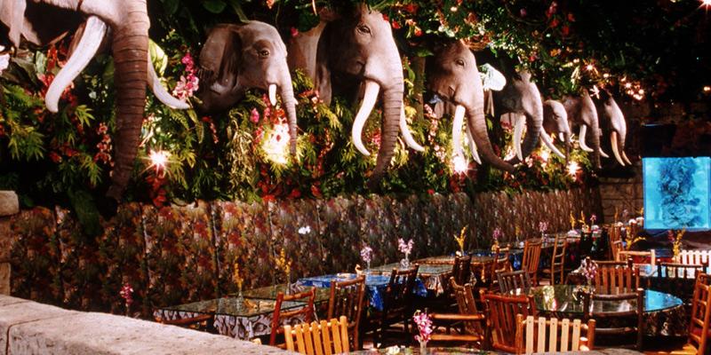 Rainforest Cafe Prices In San Antonio