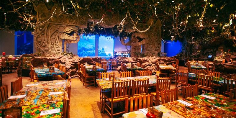 Rainforest Cafe San Antonio Prices