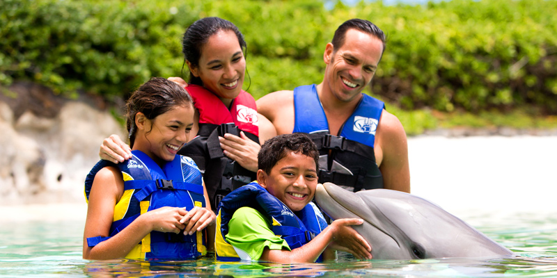 Dolphin Encounter by Sea Life Park 1