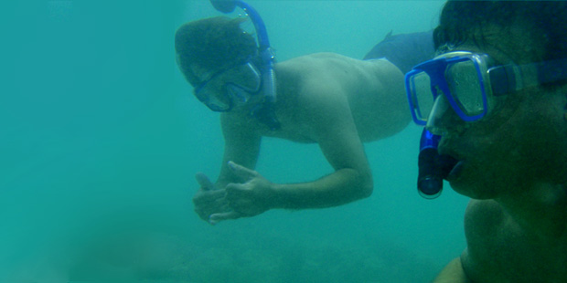 Hanauma Bay Snorkel Kaimana Tours