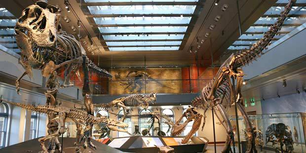 LA County Natural History Museum 4