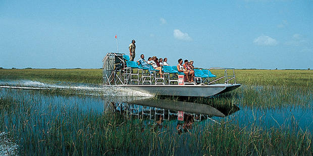 Gator Park Airboat Tour Tickets Save Up To 55 Off