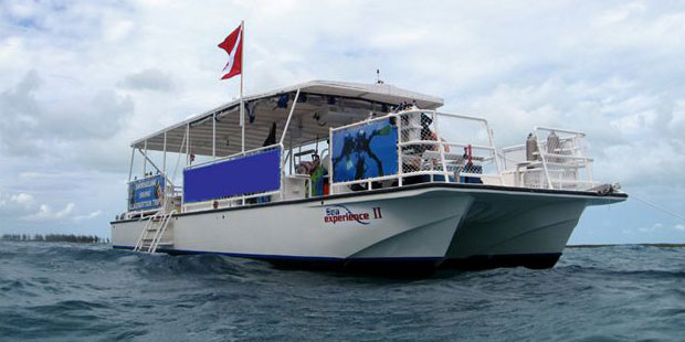 Sea Experience Glass Bottom Boat and Snorkeling