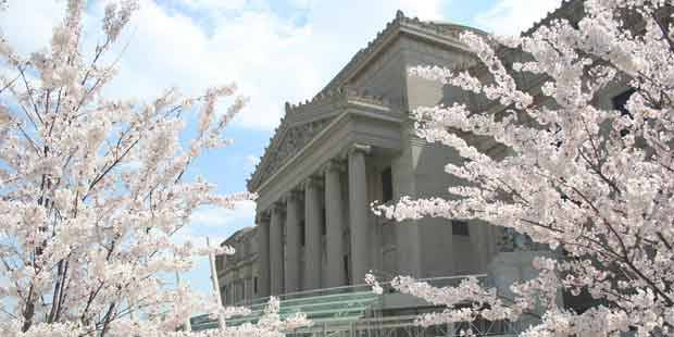 Brooklyn Museum and Brooklyn Botanic Garden 2