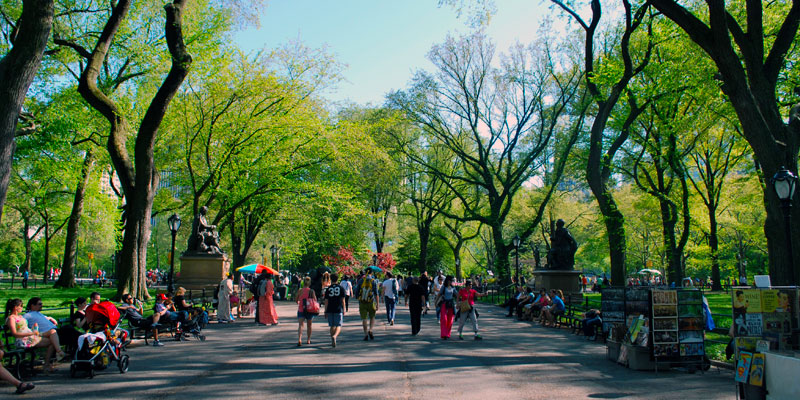Tour a piedi di Central Park, con Central Park Sightseeing 1