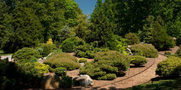 New York Botanical Garden 5