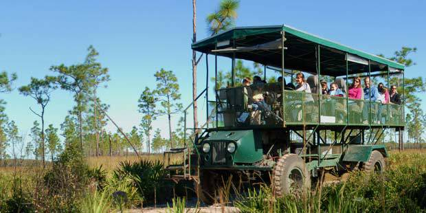 Florida Eco Safaris at Forever Florida 1