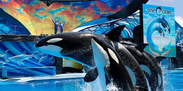 SeaWorld Busch Gardens Combo Tickets Save Up to 15 20 Off