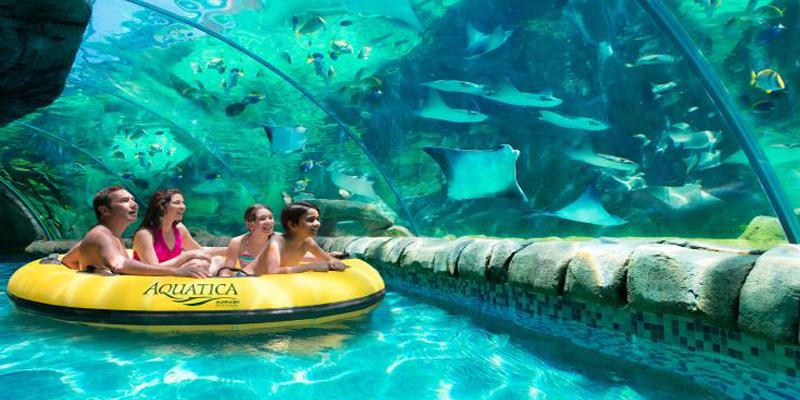 Aquatica San Antonio Tickets Amp Seaworld Save Up To 20 Off