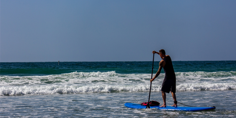 la jolla kayak tours tickets save up to 55 off