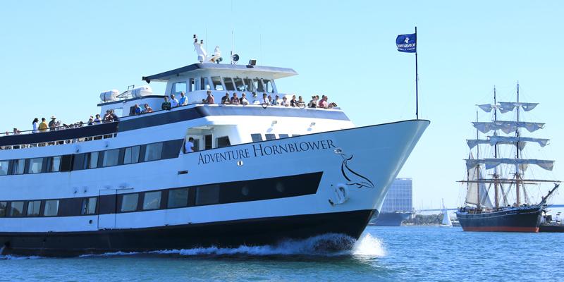 crucero de 1 hora por el puerto de san diego ofrecido por hornblower cruises ahorre hasta un 20. Black Bedroom Furniture Sets. Home Design Ideas