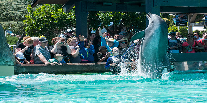 SeaWorld® San Diego - 7 Days for the Price of 1
