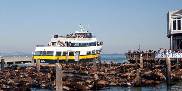 Angel Island Ferry Tickets Save Up To 60 Off