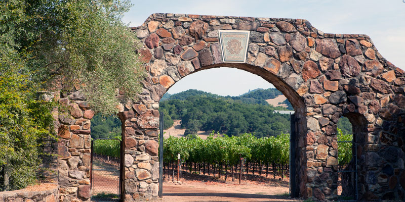 Full Day Wine Country Tour 3