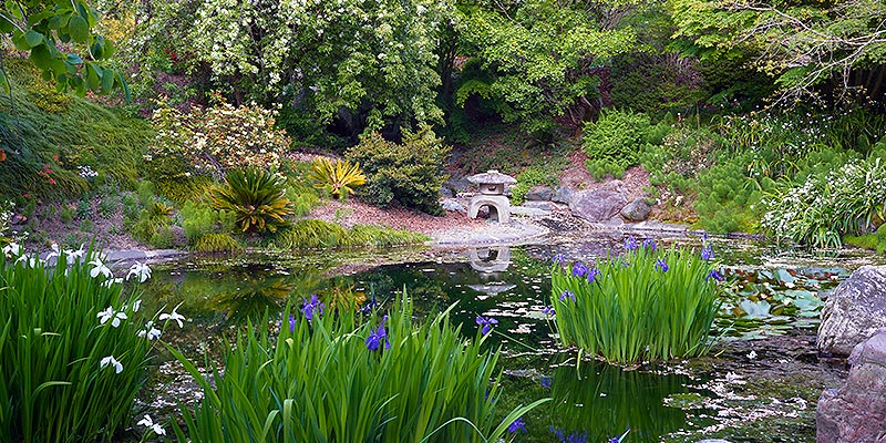uc berkeley botanical gardens tickets save up to 45 off
