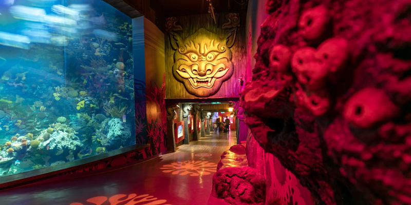 Shanghai Chengfeng Ocean World Tickets Included On Go