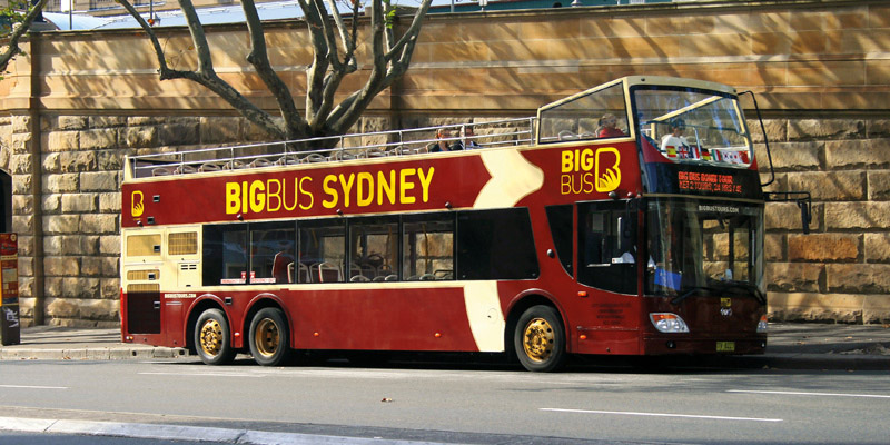 Big Bus Sydney and Bondi 1 Day Classic Tour 1