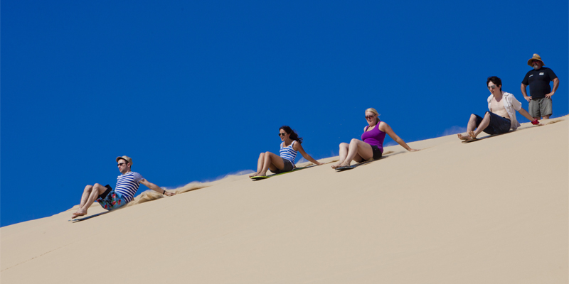 Port Stephens Wildlife Dunes and Dolphins Tour 1