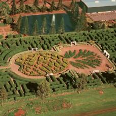 Dole Plantation Maze Tickets - Save Up to 55% Off