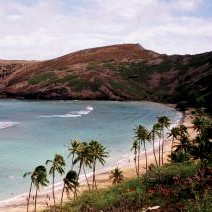 Hanauma Bay Snorkel by Kaimana Tours, LLC