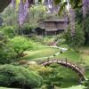 Lax_Att_The_Huntington_Library_And_Gardens
