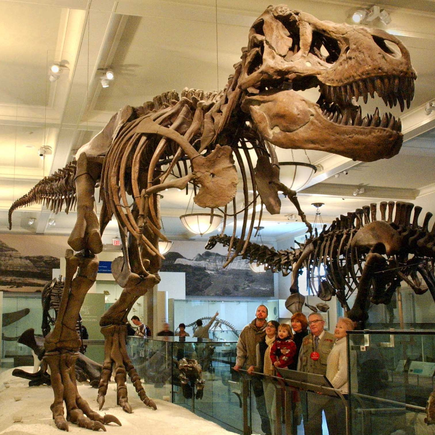 Nyc_Att_American_Museum_of_Natural_History