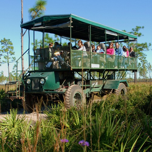 Forever Florida Trail Buggy Adventure tickets
