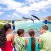 Hio_Att_Sea_Life_Park_by_Dolphin_Discovery