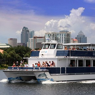 The Florida Aquarium's Wild Dolphin Cruise