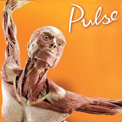 Body Worlds: Pulse at Discovery Times Square