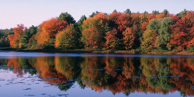 Day Motorcoach Tour of Fall Foliage