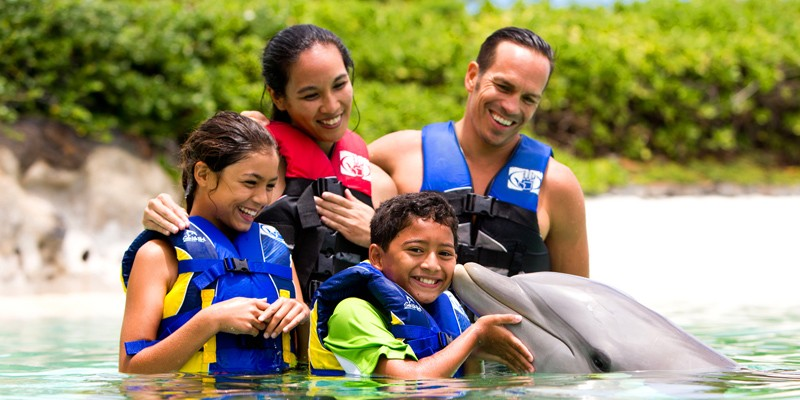 Dolphin Encounter by Sea Life Park
