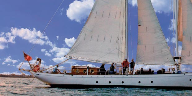 Shearwater Classic Schooner: Daytime Statue Sail or City Lights Sail