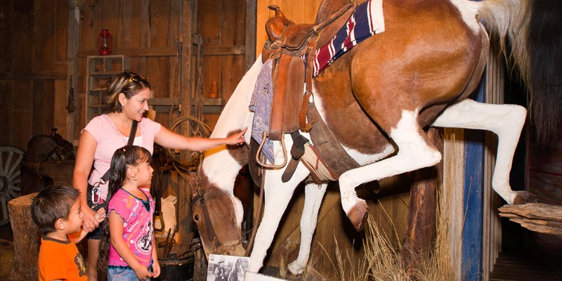 Buckhorn Saloon and Museum and Texas Ranger Museum