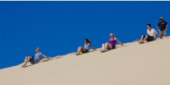 Port Stephens Wildlife, Dunes and Dolphins Tour