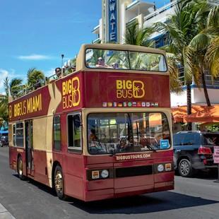 Big Bus Hop-On Hop-Off  (24hr pass)
